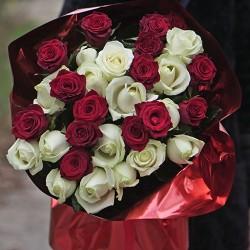 31 роза высота 70 см