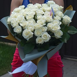 31 white rose with a height of 70 cm